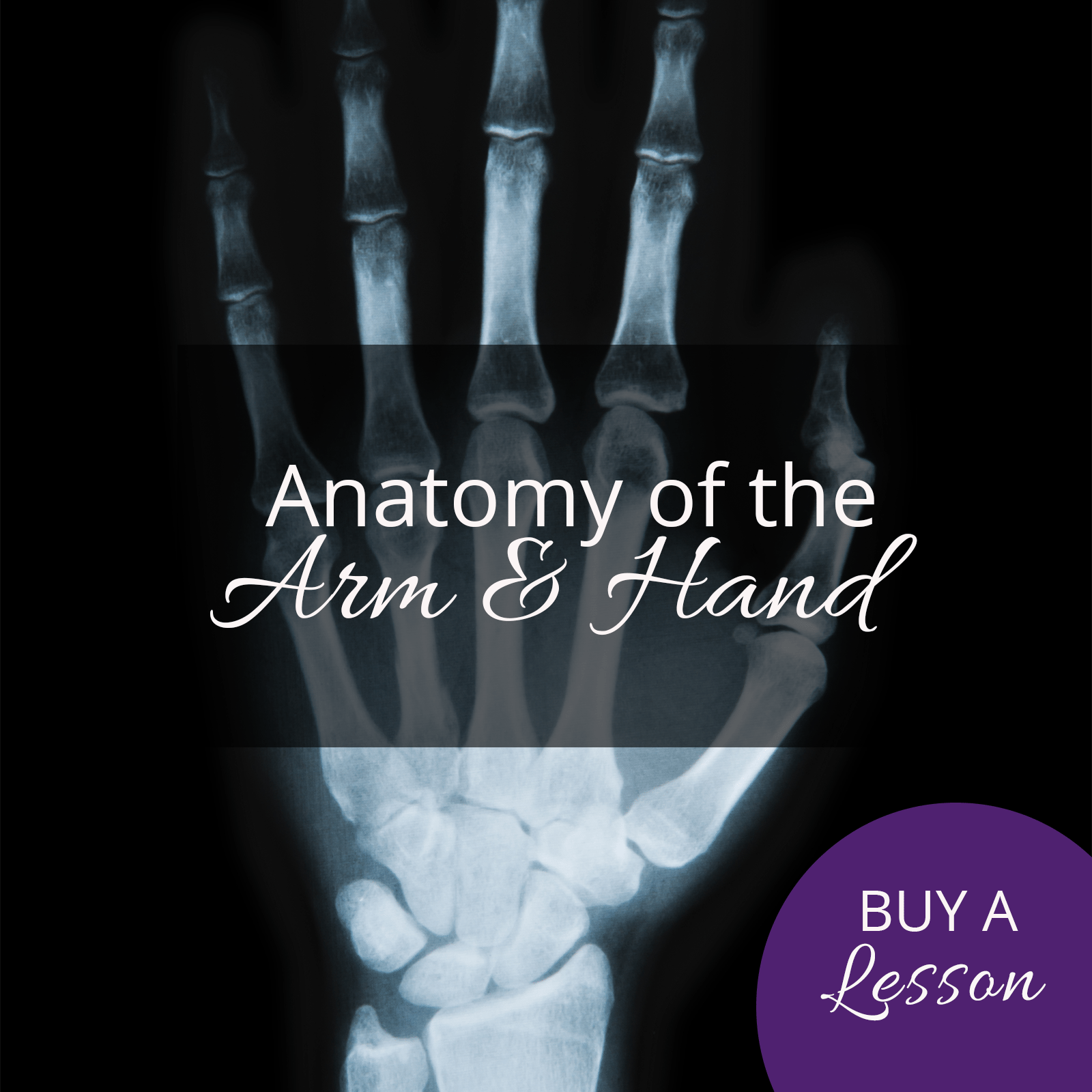 anatomy-of-arm-and-hand – The Art of Education